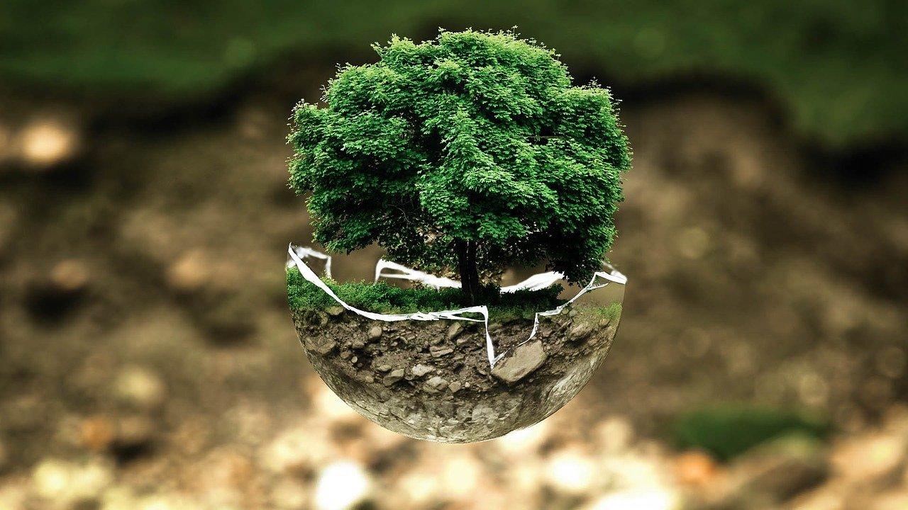 educazione ambientale a scuola