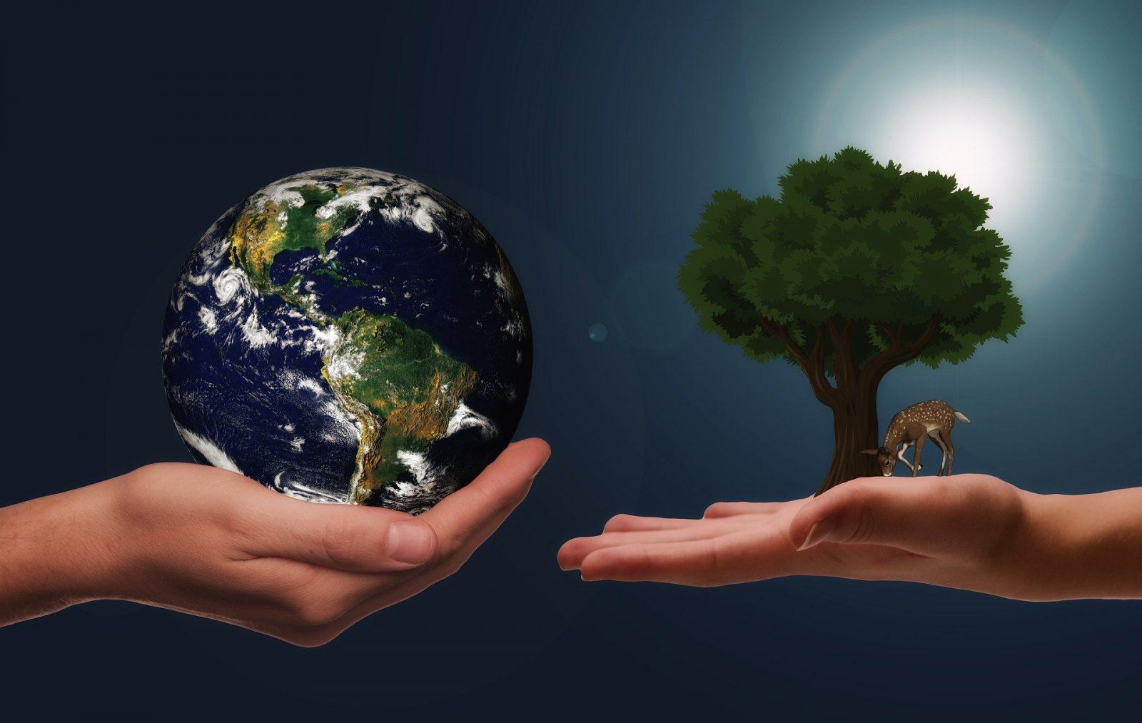 cos'è la sostenibilità ambientale